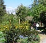 Jahr der Barmherzigkeit im Klostergarten Maria Schmolln 05-2016-09