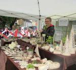 Pflanzenmarkt Klostergarten Maria Schmolln 05-2016-09 Aussteller