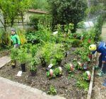 Pflanzenmarkt Klostergarten Maria Schmolln 05-2016-15