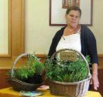 Pflanzenmarkt Klostergarten Maria Schmolln 05-2016-19 Vortrag