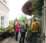 Pflanzenmarkt Klostergarten Maria Schmolln 05-2016-20