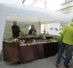 Pflanzenmarkt Klostergarten Maria Schmolln 05-2016-26 Aussteller